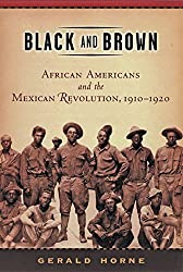 Black and Brown: African Americans and the Mexican Revolution,1910-1920 (American History and Culture)
