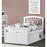 Hillsdale Furniture 2184CCTB Hillsdale Charlie Captains Bed with One Storage Unit, Twin, White