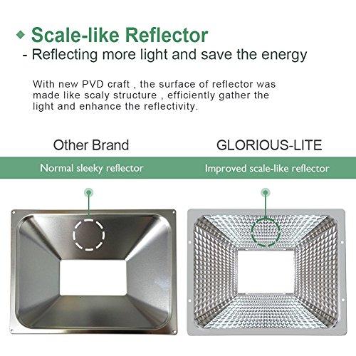 100w Craft Led Flood Lights Super Bright Work Lights: GLORIOUS-LITE LED Flood Light, 100W(500W Halogen Equiv