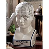 Design Toscano Porcelain Phrenology Head Statue