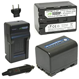 Wasabi Power Battery (2-Pack) and Charger for Sony NP-QM71D and Sony CCD-TRV107, TRV108, TRV118, TRV128, TRV138, TRV150, TRV228, TRV250, TRV270, TRV285, TRV308, TRV318, TRV328, TRV338, TRV350, TRV608, DCR-DVD100, DVD101, DVD200, DVD201, DVD300, DVD301, HC