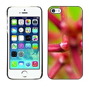 "For Apple iPhone 5 / 5S , S-type Planta Naturaleza Forrest Flor 21"" - Arte & diseño plástico duro Fundas Cover Cubre Hard Case Cover"