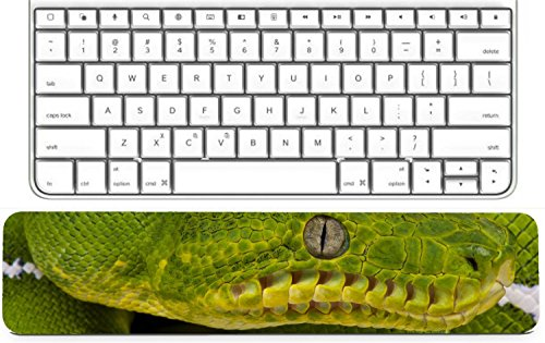 MSD Keyboard Wrist Rest Pad Long Extended Arm Supported Mousepad IMAGE ID 28607248 Green Fresh Leaf with Seven Tips
