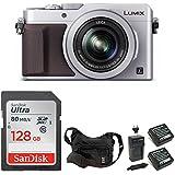 PANASONIC LUMIX LX100 (Silver) 4K Point and Shoot Camera Professional Bundle