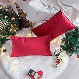 UGASA Velvet Soft Soild Decorative Pillow Covers Christmas Cushion Case for Sofa/Bedroom/Car, Set of 2, 12x20 Inch, Crimson Red