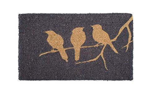 - Handwoven, Low Profile Thin Doormat |  Entryway Door mat For Patio, Front Door | Decorative All-Season | Birds on Branch | 18
