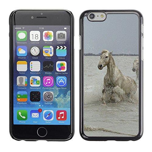 "Premio Sottile Slim Cassa Custodia Case Cover Shell // F00007985 Blanc Stallions // Apple iPhone 6 6S 6G PLUS 5.5"""