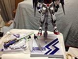METAL BUILD Mobile Suit Gundam 00 Raiser figures