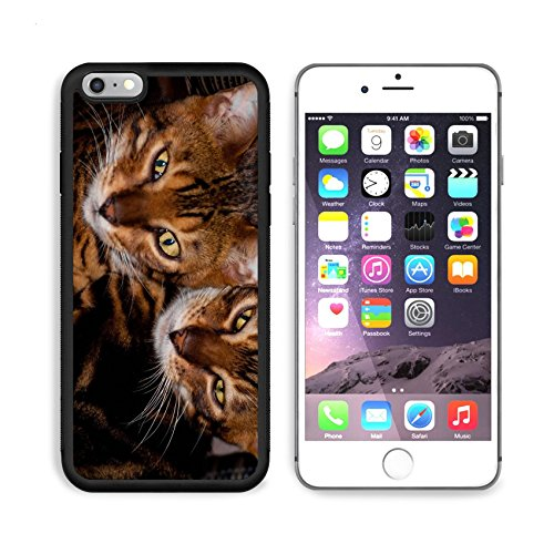 MSD Premium Apple iPhone 6 Plus iPhone 6S Plus Aluminum Backplate Bumper Snap Case IMAGE ID: 11059996 2 bengal cats faces side by side