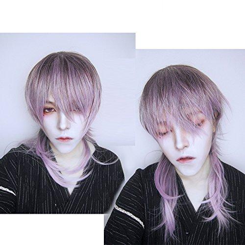 Amazon Com Gothic Dark Grey Purple Gradient Long Ponytail Men