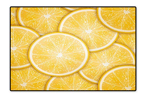 Perfect Kitchen Rugs Citrus Orange Lemon Cut Fresh Fruit Pattern Healthy Cool Inspired Artprint Orange for Home and Office 4'x5'