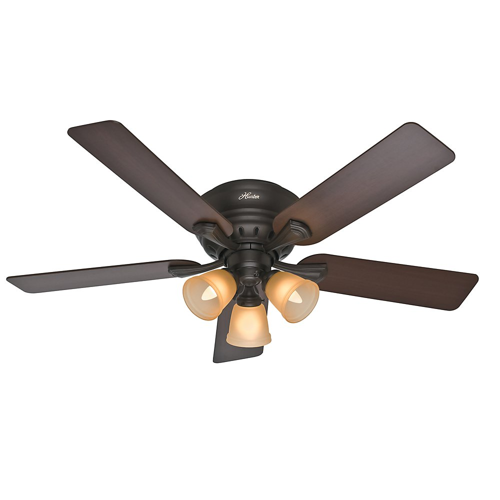 Hunter Fan Company 53012 Reinert 52-Inch Premier Bronze Ceiling Fan with Five Brazilian Cherry/Dark Walnut Blades and a Light Kit