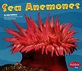Sea Anemones, Jody Sullivan, 0736842713