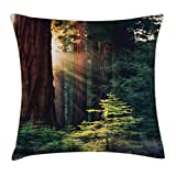 Ambesonne National Parks Home Decor Throw Pillow Cushion Cover, Morning Sunlight in Wilderness Yosemite Sierra Nevada Nature Art, Decorative Square Accent Pillow Case, 16 X 16 Inches, Green Brown