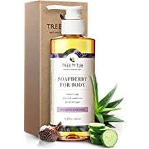 Gentle, Moisturizing Body Wash for Dry Skin. The Only 5.5 pH Balanced Body Wash for Sensitive Skin – Pure Lavender Soap for All Ages with Organic Wild Soapberries, 8.5 oz—by Tree To Tub