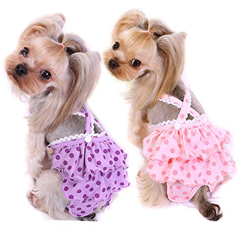 Alfie Pet - Frona Diaper Dog Sanitary Pantie with Suspender 2-Piece Set for Girl Dogs - Size: Large