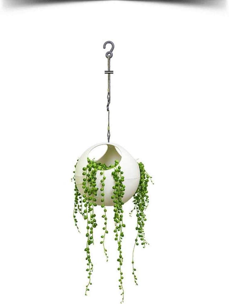 NOBRAND Cuenco mágico Colgante hogar Verde Planta Colgante Maceta Hermosa
