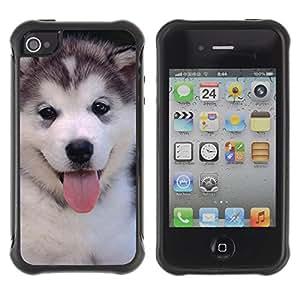 Suave TPU GEL Carcasa Funda Silicona Blando Estuche Caso de protección (para) Apple Iphone 4 / 4S / CECELL Phone case / / Husky Siberian Dog Cute Puppy /