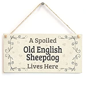 "Meijiafei A Spoiled Old English Sheepdog Lives Here - Lovely PVC Home Accessory Gift Sign 10""x5"" 10"