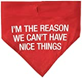 About Face Designs Can't Have Nice Things Large Pet Bandana, Red