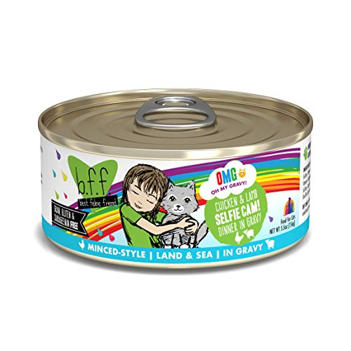 Weruva B.F.F. Omg - Best Feline Friend Oh My Gravy! Grain-Free Wet Cat Food Cans (Best Gravy For Lamb)