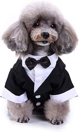 Camisa del Perro del Perrito del Animal Doméstico Ropa para Perros Pequeños, Traje Elegante Pajarita De Vestuario, Prince Perro Camisa De La Boda del Smoking Formal con Corbata De Negro,L: Amazon.es: Hogar