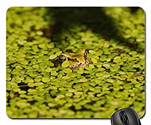 alone frog Mouse Pad, Mousepad (Frogs Mouse Pad)