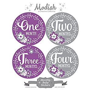 12 Monthly Baby Stickers, Purple, Gray, Flowers, Girl, Baby Belly Stickers, Baby Month Stickers, First Year Stickers Months 1-12, Purple, Grey, Baby Girl 2