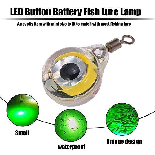 Silverdewi Luces de Pesca de tama/ño peque/ño Night Glow Fluorescente LED se/ñuelo de luz Nocturna subacu/ática para atraer Peces Suministros de Pesca LED Verde