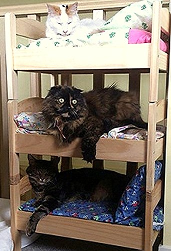 Amazon Com Miniature Bunk Bed For Cats Dolls Puppies Or Small Dogs