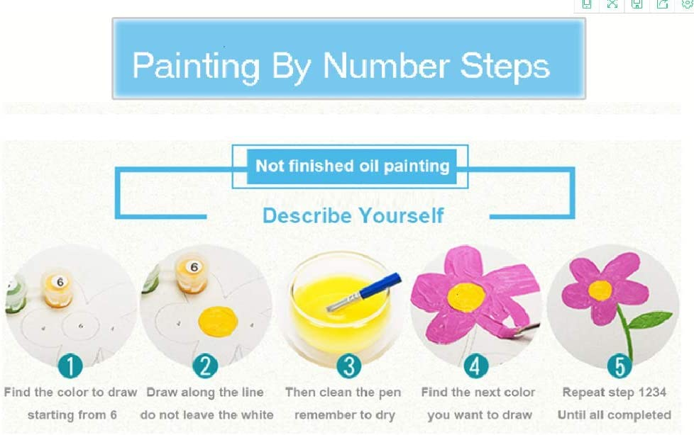 Paint by Number Kits Kit for Kids Adultscolor Butterfly Dream Catcher 40*50Cm No Frame