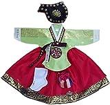 Hanbok Korean Traditional Hanboks Babies Girls Dress Costumes 1st Birthday DOLBOK Party Gift hg304