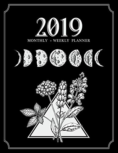 Llewellyn's 2019 Astrological Pocket Planner: Daily Ephemeris
