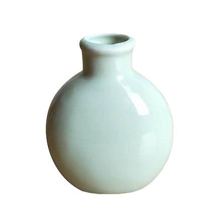 1 X Toruiwa Vase Mini Plantes En Céramique Pot De Fleurs Séchées Fleur  Plantes Conteneurs Balcon