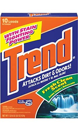 Dial 1403580 Trend Dry Detergent, 22oz Size (Pack of 12)