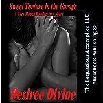 Sweet Torture in the Garage: A Very Rough Bondage Sex Short | Desiree Divine