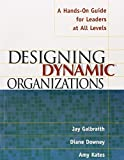 Designing Dynamic Organizations: A Hands-on Guide for Leaders at All Levels by Jay Galbraith (2001-12-17)