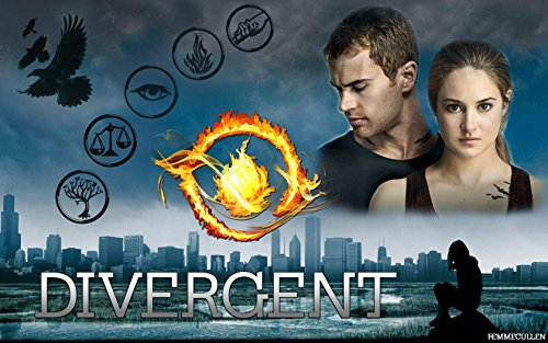 Divergent Factions Edible Image Cake Topper (1/4 - Supplies Divergent Birthday Party