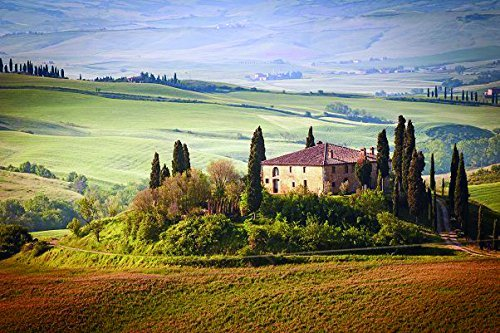Italy tuscany summer countryside landscape nature trees sky green field- Nature Art Poster Print on Canvas 43x24in (P-1000153) - Tuscany Oil Painting