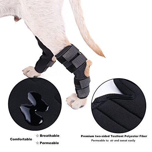 Dog Leg Support Brace Canine Rear Hock Joint Brace, Compression Wrap Protect Wounds/ Heal Injuries and Sprains Help Loss of Stability caused by Arthritis(1 Pair) (M)