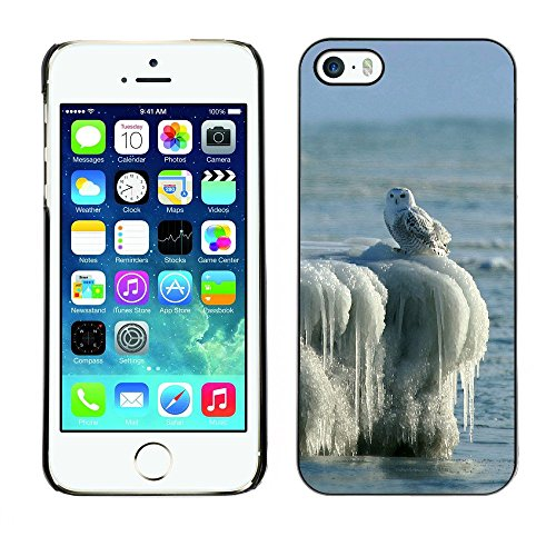 Premio Sottile Slim Cassa Custodia Case Cover Shell // F00000037 blackandwhite aviaire // Apple iPhone 5 5S 5G