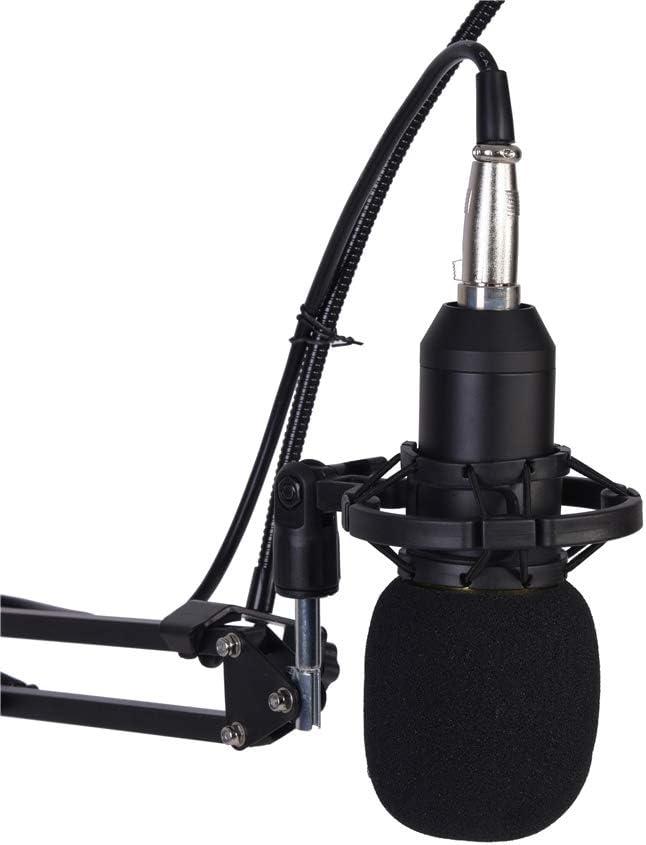 Jadeshay Microphone /à condensateur Support de Bras de Microphone Kit de Capuchon de Filtre Po-p Accessoire denregistrement