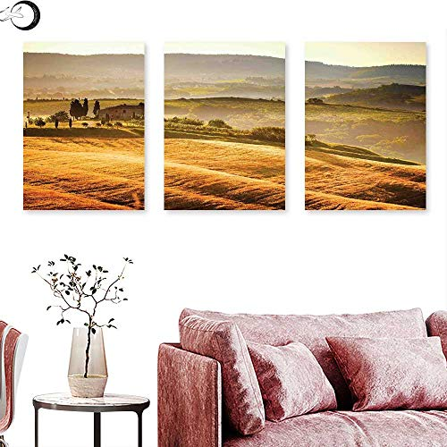 J Chief Sky Tuscan Wall hangings Siena Tuscany Retro Farm House Trees Old Path Country Landscape on Sunset Triptych Wall Art Ginger and Green Triptych Art Canvas W 20