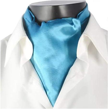 WeN Bufanda de los Hombres Estilo británico Camisa de Traje Color sólido Bufanda Lisa Cumpleaños Día del Padre Enviar a papá para Enviar Regalo de Novio (Color : Cielo Azul): Amazon.es: Hogar