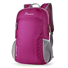 Mountaintop 25L Foldable Daypack Lightweight Backpack for School, Travel, Hiking