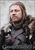 Ata-Boy Game of Thrones Ned Stark 2.5' x 3.5' Magnet for Refrigerators and Lockers
