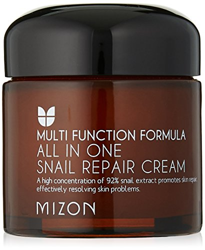 MIZON All In One Snail Repair Cream, 75 Grams