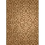 Printed Photography Background Light Brown Design Backdrops Modern Titanium Cloth TC1321 10'x20' Ft (120''x240'') Backdrop Better Then Muslin or Canvas