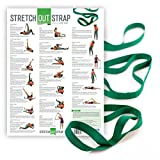 The Original Stretch Out Strap with Exercise Poster by OPTP – Top Choice of Physical Therapists & Athletic Trainers