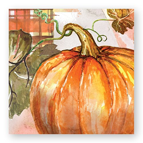 (C.R. Gibson Orange Pumpkin Beverage and Cocktail Napkins, 20pc, 5.5'' W x 5.5'' L)
